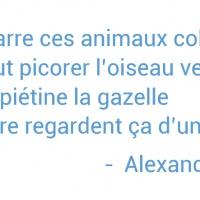 Alexandre 8 ans