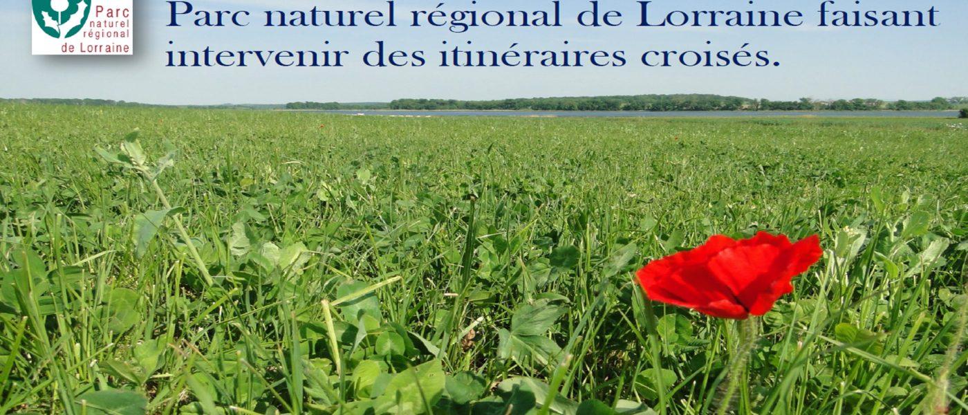 Animations et projets proposés par le Parc naturel régional de Lorraine faisant intervenir des itinéraires croisés