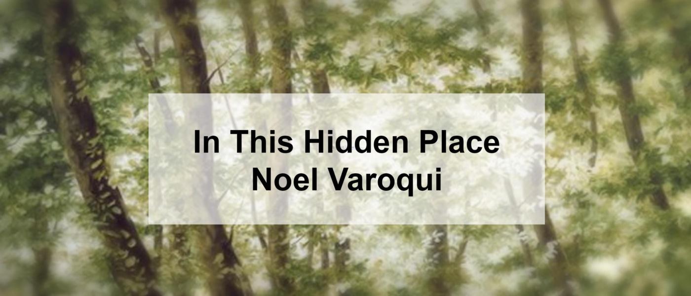 In This Hidden Place – Noel Varoqui
