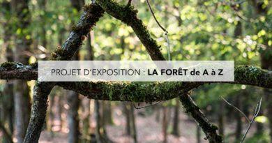 Un projet d'exposition «La Forêt de A à Z»