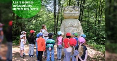 Ressources en ligne – Vents des Forêts (55)